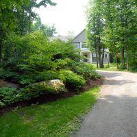 Before: House entrance